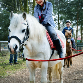 Clip Clop Pony Rides at Wheelgate